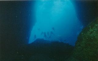洞窟-1.jpg