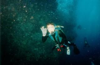 ボホール海中.jpg